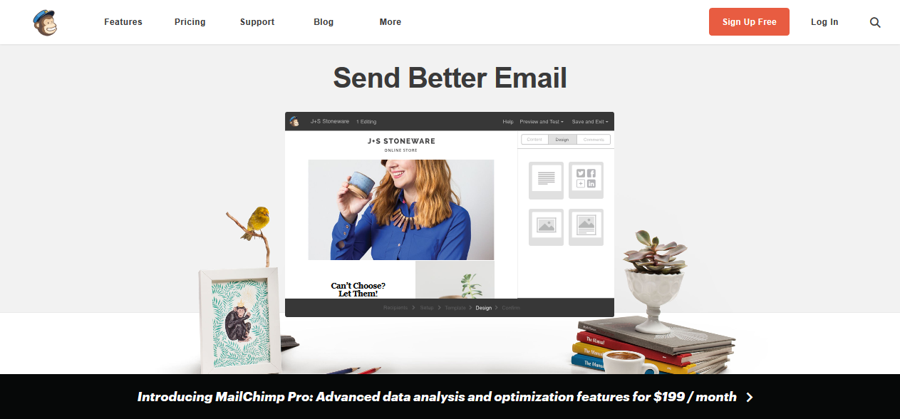 fairplaid-mailchimp-email-marketing-sport
